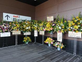 HKT48劇場前の花